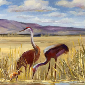 West/SandhillCranes_sq.JPG